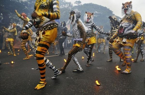 national-geographic-photography-contest-2011-11